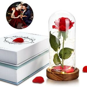Beauty & The Beast Enchanted Rose Glass Dome with LED Light Valentine's Day Gift