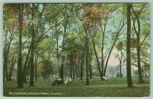 Chicago Lincoln Park Enjoy Benches Under Tall Trees Early Autumn Season c1910 $9.00