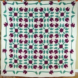 MAGNIFICENT Vintage Iris Applique Antique Quilt ~Kaleidoscope Like Design!