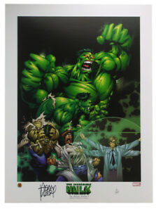 Incredible Hulk Face Of Rage Lithograph Signed by Adam Kubert 41000 Marvel $349.95