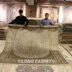 Yilong 8'x10' Radiation Design Handmade Carpet Large Hand Knotted Silk Rug L175A