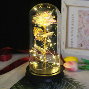 Elegant Gold Foil Rose LED Luminous Galaxy Mother's Day Valentine's Day