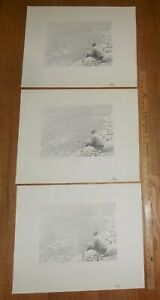 3 Harry E Buckley pencil signed lithographs Fishing on the Wissahickon 1979 $18.99
