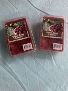 2 SONOMA Goods for Life® Winter Berry & Spice Wax Melt 6-piece Set