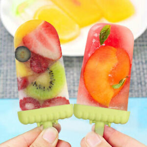 DIY Pop Mold Popsicle Maker Tray Pan Frozen Ice Cream Mould Use Many Times NEW