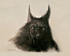 DOGMAN CRYPTID WEREWOLF SHIFTER ART PRINT FROM ORIGINAL PAINTING $35.00