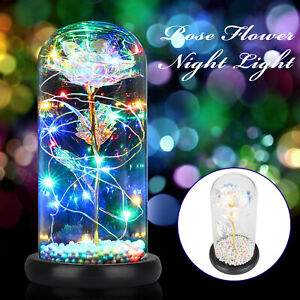 Crystal Colorful Rose Flower In the Glass Dome LED Light Gift for Girlfriend Mom $22.98