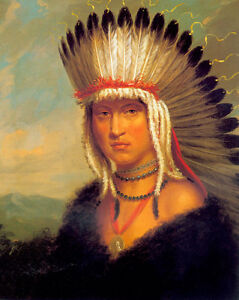The Pawnee Brave 22x30 George Catlin Native American Indian Art