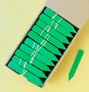Green Plastic Plant Stakes / Labels / Nursery Tags - Made in USA - 4