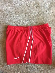 NWT Nike Running Dri-fit Shorts Men' Size Large Red With Liner
