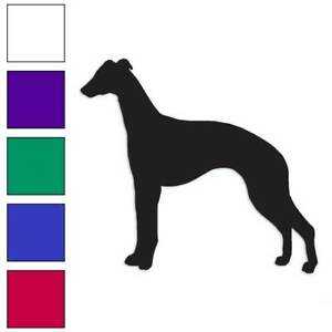 Whippet Dog Breed Decal Sticker Choose Color Large Size #lg2025