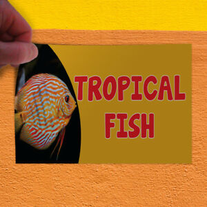 Decal Sticker Tropical Fish #1 Style B Restaurant & Food Outdoor Store Sign