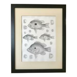 Original 19th Century  Antique Lithograph of Fish c.1850 U.S.P.R.R. Exp. $145.00
