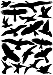 18 Bird Silhouettes VINYL DECAL Protective Warning Stickers Windows Glass 4x5.5