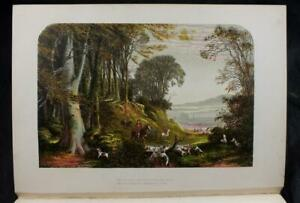 c1860 GEMS FROM THE POETS - DESIGNS F A LYDON CHROMOLITHOGRAPHS 1ST BINDING