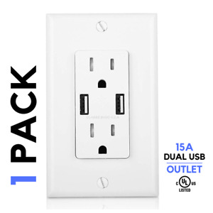1 Pack, Dual USB Outlet Charger 4.1A Dual Duplex Receptacle 15-Amp w Wall Plate