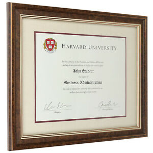 11x14 Document Frame with Double Mat - Brown/Burgundy