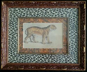 Antique Felis Tigris lithograph 19th century $129.95