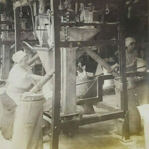 New York Brooklyn Sugar Factory Filling Sewing Bags Refinery Stereoview E448 $8.95