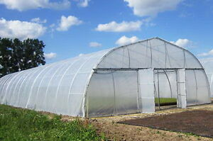 Greenhouse Plastic Clear 4 Year 6 Mil Poly Film Cover Multiple Sizes $52.00