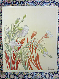 PRIVAT LIVEMONT - ORIGINAL  VINTAGE - STUDY & LITHOGRAPH OF CARNATIONS