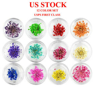 12 Colors Dry Dried Flowers for 3D UV Gel Acrylic Nail Art Tips DIY Decoration