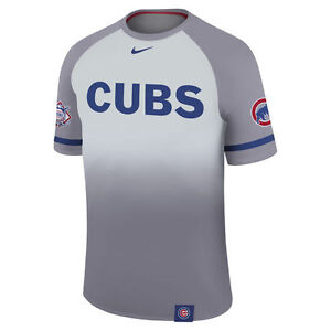 Nike Dri-FIT 2017 MLB Authentic Collection Chicago Cubs Legend Raglan T-Shirt