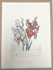 Hand Signed Salvador Dali Etching Surrealistic flowers; Pirate's Gladioli 1972 $3300.00
