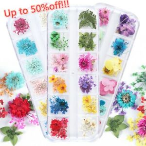 Sticker Decor Nail Dried Flower  Nail Art Decorations Manicure Tips Babysbreath
