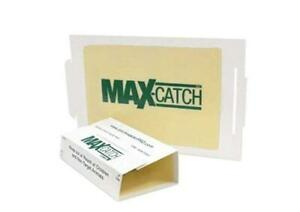 Catchmaster 72 MAX Mouse Glue Boards 36 or 72 count Mice Roach Flies Crickets