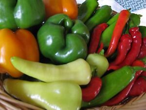 Heirloom Pepper Seed Garden Collection-Organic NonGMO - 4 varieties (200+ seeds)