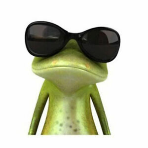 Frog Decal Sticker Funny Cute for Wall Car Etc Waterproof Sunglass Cool 5x5 In.
