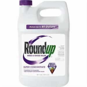 Roundup 1 Gal. Super Concentrate Weed & Grass Killer 2 pk