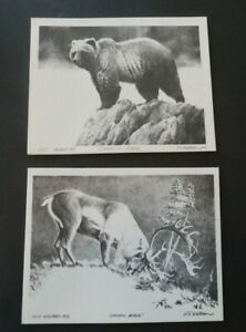 Blank Note Card Alaska Animal Lithograph by R.T. Wallen Caribou Bear C140 $9.99