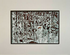 Bev Doolittle Woodland Encounter Matted Print fits a standard 11x14 ready frame $16.99