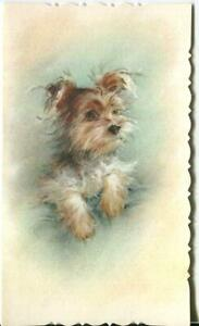 VINTAGE GORGEOUS PASTEL YORKSHIRE TERRIER DOG ANIMAL LITHOGRAPH ART NOTE CARD $199.00
