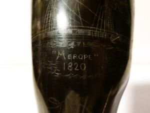 c1820 Cape Horn Ship ' Merope ' America CONVICT Sunday Roast Cattle Powder Horn