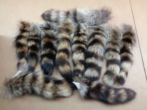 XL Tanned Raccoon Tail Crafts Real USA Fur Tail Harley parts Coon Tails Cat Toys