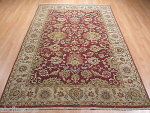 6x9 Fine Tabriz Vegetable Dye Hand-made-knotted Wool Rug 582166