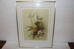Original 1970s Colour Lithograph Organic Shapes Surrealism Butterfly