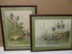 20x26 PAIR OF FRAMED 1885 CHROMOLITHOGRAPHS  BY LEONCE STUNNING BIRDS LILY PADS