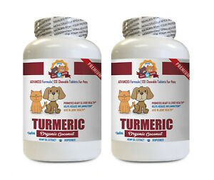 dog anxiety relief PETS TURMERIC AND COCONUT OIL coconut oil for dogs 2B