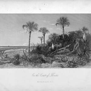 Antique On the Coast of Florida Steel Plate Historical Engraving by D. Appleton $50.00