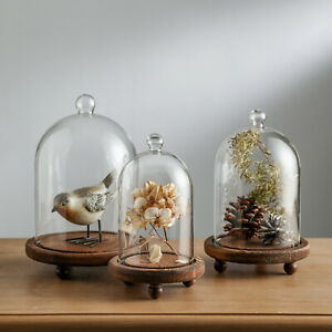 3PC Decorative Clear Glass Display Dome Case Cloche Jar with Wood Base