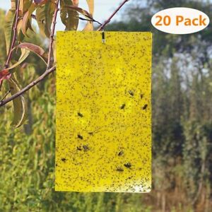 20PCS Dual-Sided Yellow Sticky Traps Flying Plant Insect Fungus Gnats Whiteflies