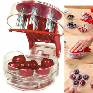Cherry Pitter Pitt 6 Cherries at Once Cherries Pitter Seed Removing Tool US SHIP