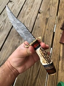 CUSTOM HAND FORGED DAMASCUS STEEL HUNTING KNIFE W Stag Handle Brass Guard