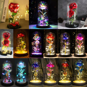 Galaxy Foil Rose Flower LED Light in Glass Dome Valentines Day Birthday Gifts