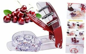 Cherry Pitter Stainless Steel Multiple Cherry Seed Extractor Remover Machine