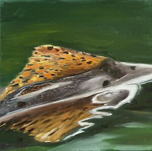 Trout Fin oil paintings original Fly Fishing $95.00